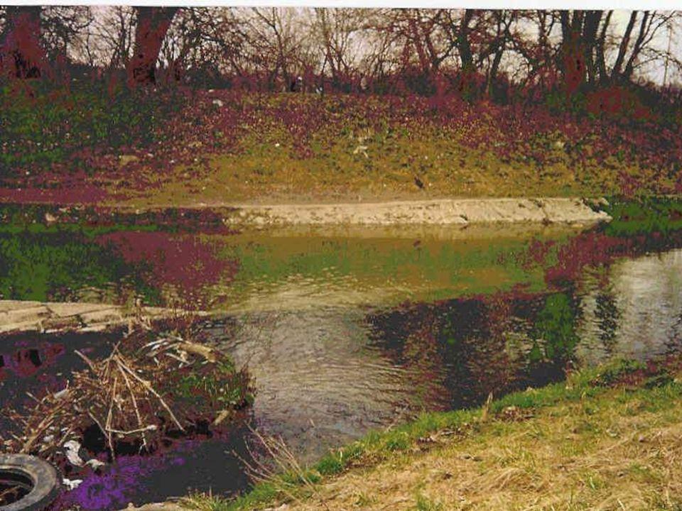 Tiszaújváros: vízkivétel és melegvíz visszavezetés