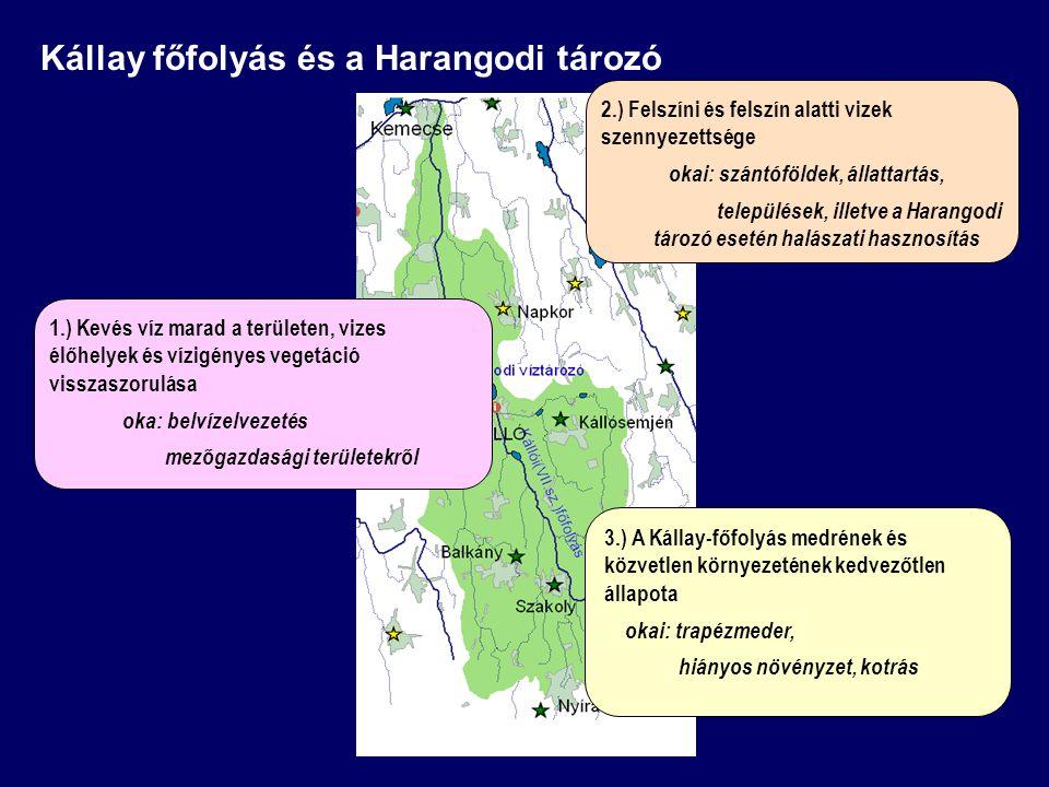 2.) Felszíni és felszín alatti vizek szennyezettsége okai: szántóföldek, állattartás, települések, illetve a Harangodi tározó esetén halászati hasznos