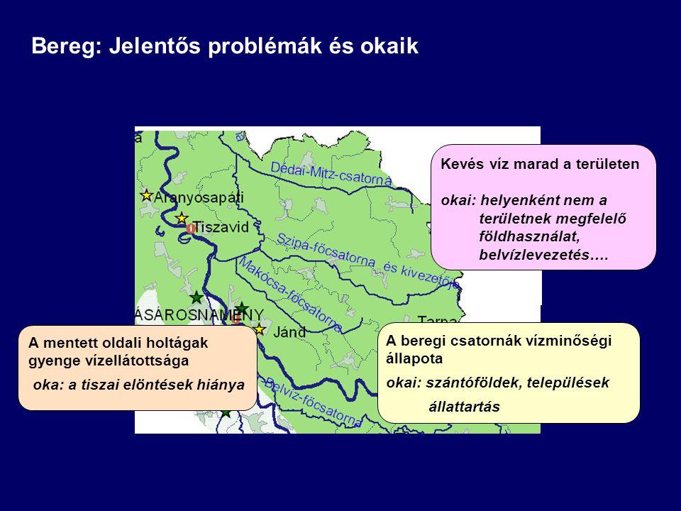 Bereg: Jelentős problémák és okaik Kevés víz marad a területen okai: helyenként nem a területnek megfelelő földhasználat, belvízlevezetés…. A beregi c