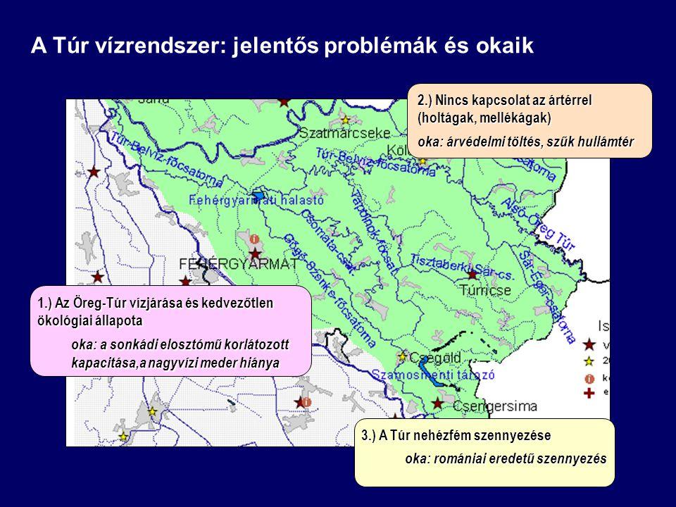 3.) A Túr nehézfém szennyezése oka: romániai eredetű szennyezés oka: romániai eredetű szennyezés 2.) Nincs kapcsolat az ártérrel (holtágak, mellékágak
