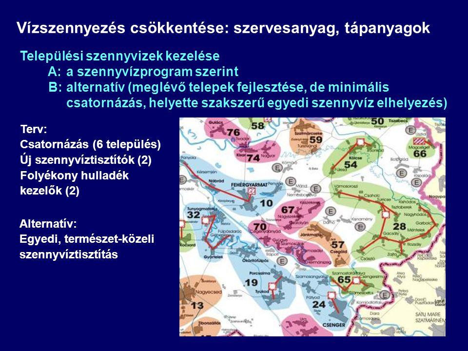 Terv: Csatornázás (6 település) Új szennyvíztisztítók (2) Folyékony hulladék kezelők (2) Vízszennyezés csökkentése: szervesanyag, tápanyagok Település