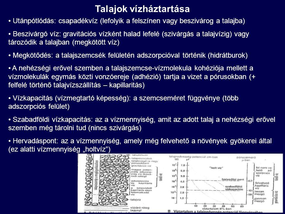 Talajszennyezések környezeti következményei Közvetlen hatások: Tápanyagfeldúsulás, sófelhalmozódás Talaj savanyodása, erdőpusztulás Közvetlen mérgezés és feldúsulás a táplálékláncban (krónikus hatások) Mutagén, teratogén, rákkeltő hatások Közvetett hatások: Felszín alatti vizek szennyezése (nitrátosodás, szerves és szervetlen mikroszennyezők) Felszíni vizek szennyezése (erózióval, drénezéssel, alaphozammal), pl.