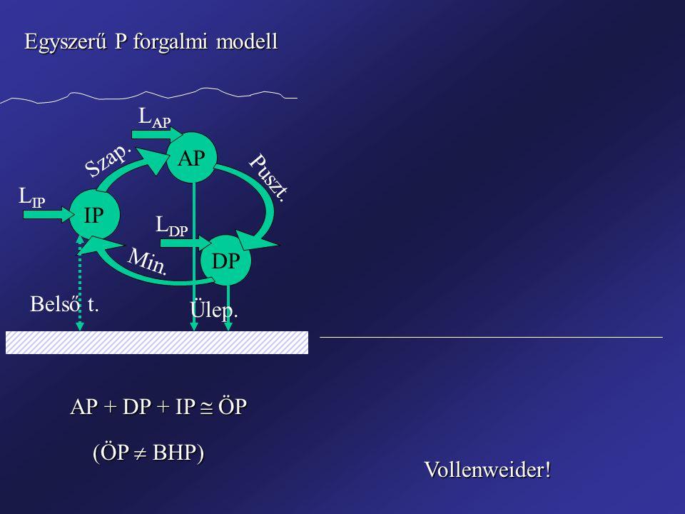 Egyszerű P forgalmi modell IP AP DP Szap. Puszt. Min.