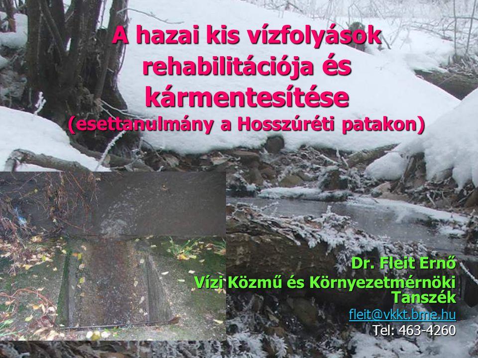 1 A hazai kis vízfolyások rehabilitációja és kármentesítése (esettanulmány a Hosszúréti patakon) Dr. Fleit Ernő Vízi Közmű és Környezetmérnöki Tanszék