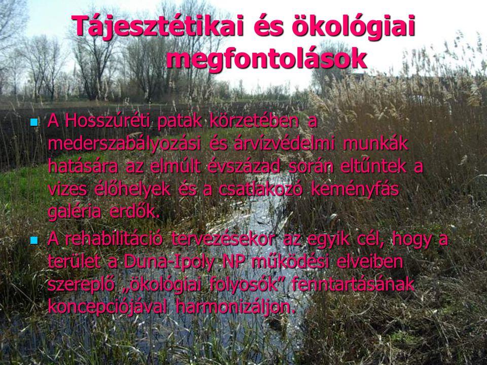 35 Tájesztétikai és ökológiai megfontolások A Hosszúréti patak körzetében a mederszabályozási és árvízvédelmi munkák hatására az elmúlt évszázad során