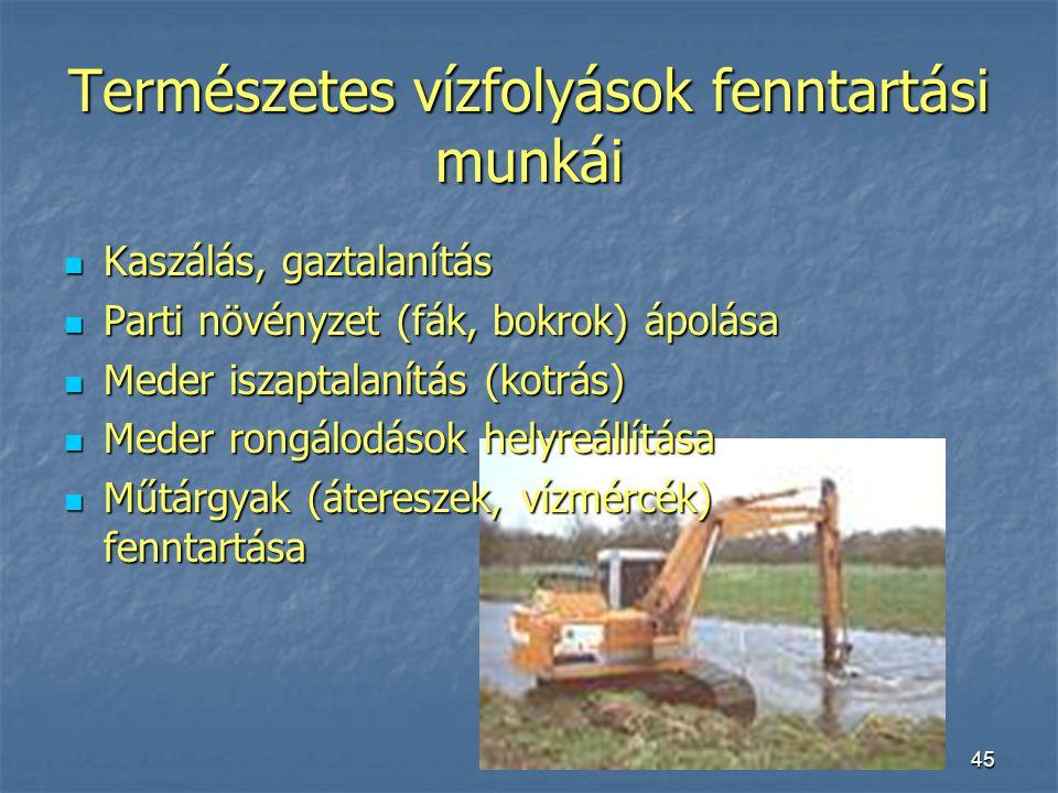 45 Természetes vízfolyások fenntartási munkái Kaszálás, gaztalanítás Kaszálás, gaztalanítás Parti növényzet (fák, bokrok) ápolása Parti növényzet (fák