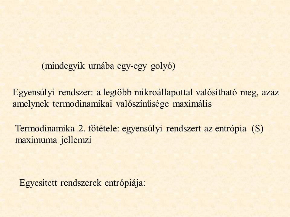 (mindegyik urnába egy-egy golyó) Egyensúlyi rendszer: a legtöbb mikroállapottal valósítható meg, azaz amelynek termodinamikai valószínűsége maximális Termodinamika 2.