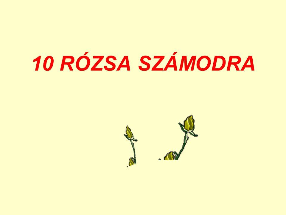 10 kívánságot küldök neked 2008-ra Zene.Unbreak my heart-Romantik Violine