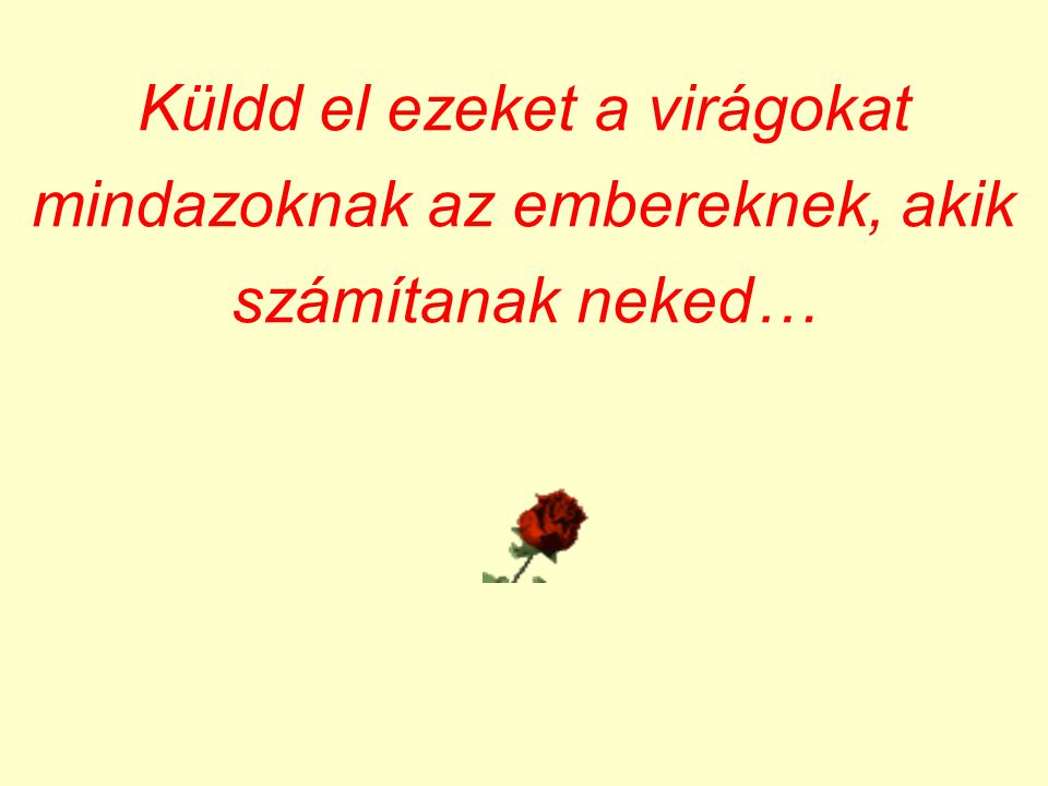 Mindig jó érzés virágot küldeni, tehát …