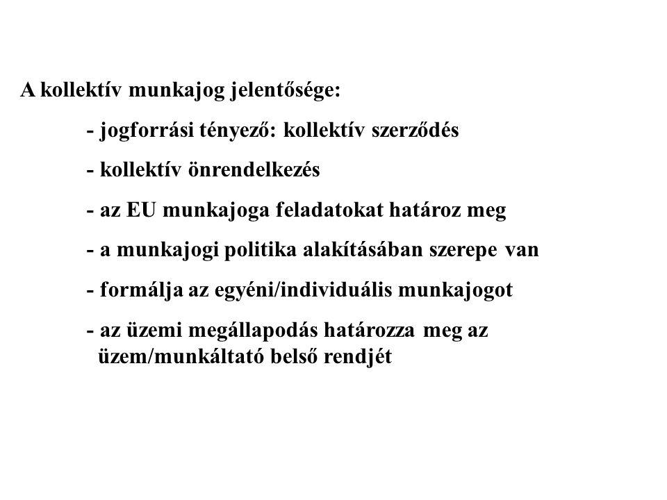 AZ ÜZEMI TANÁCS JOGKÖRE II.