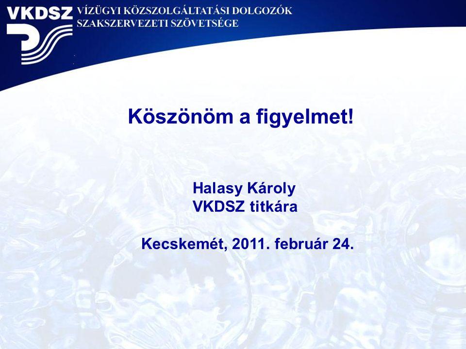 Köszönöm a figyelmet! Halasy Károly VKDSZ titkára Kecskemét, 2011. február 24.