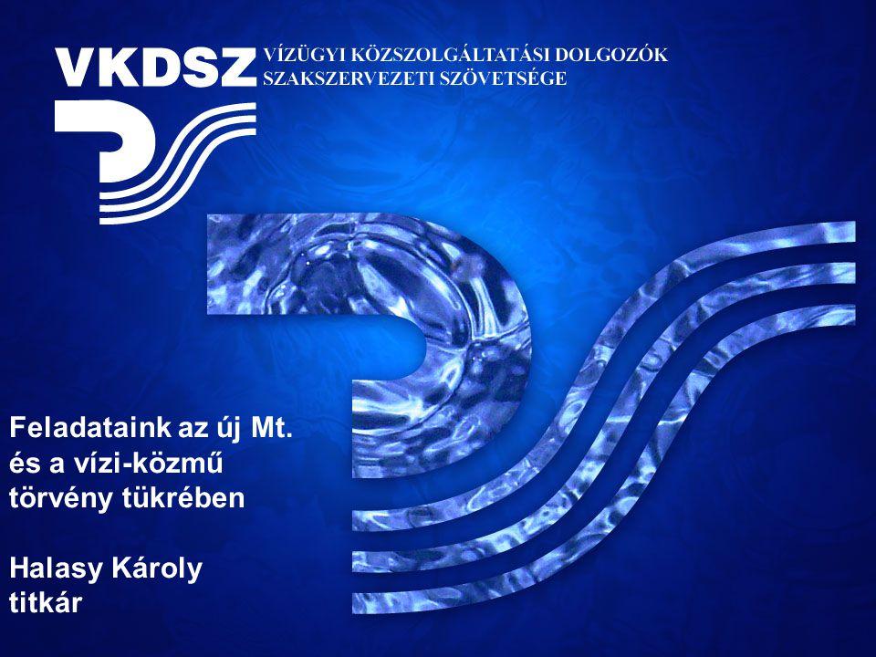 Feladataink az új Mt. és a vízi-közmű törvény tükrében Halasy Károly titkár