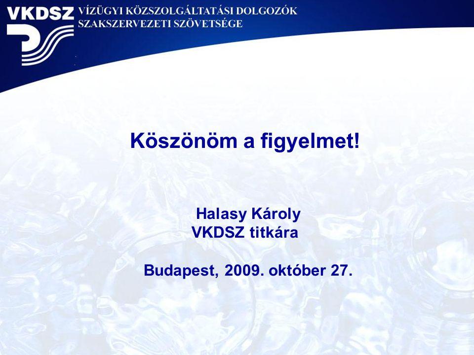 Köszönöm a figyelmet! Halasy Károly VKDSZ titkára Budapest, 2009. október 27.