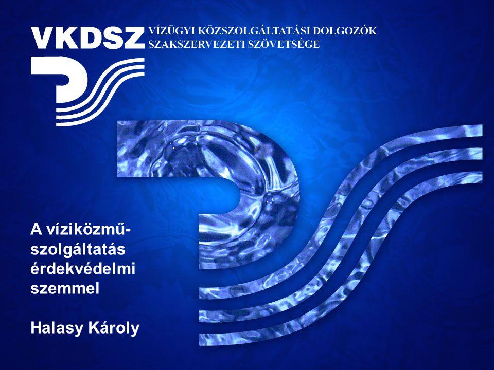 A víziközmű- szolgáltatás érdekvédelmi szemmel Halasy Károly