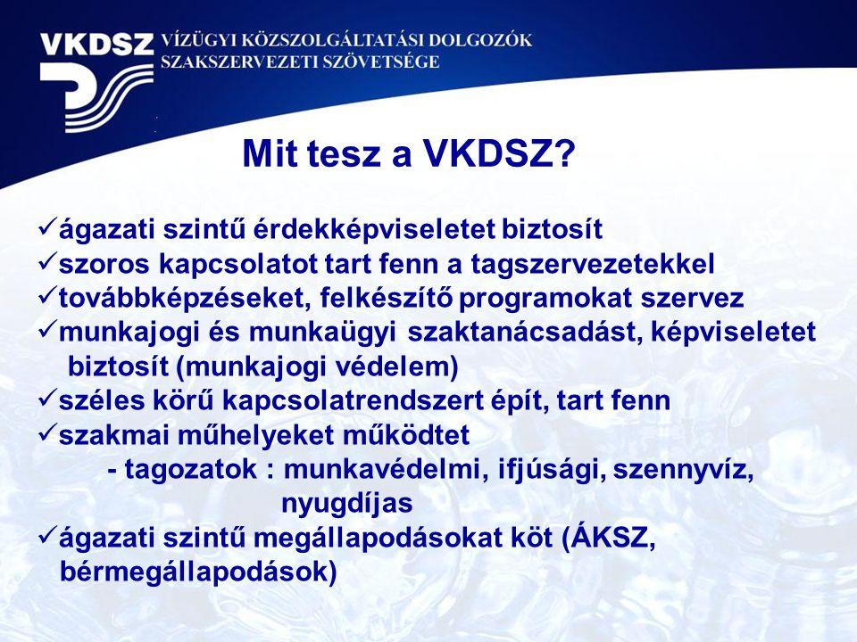 Köszönöm a figyelmet! Halasy Károly VKDSZ titkára Balatonszemes, 2010. június 15.