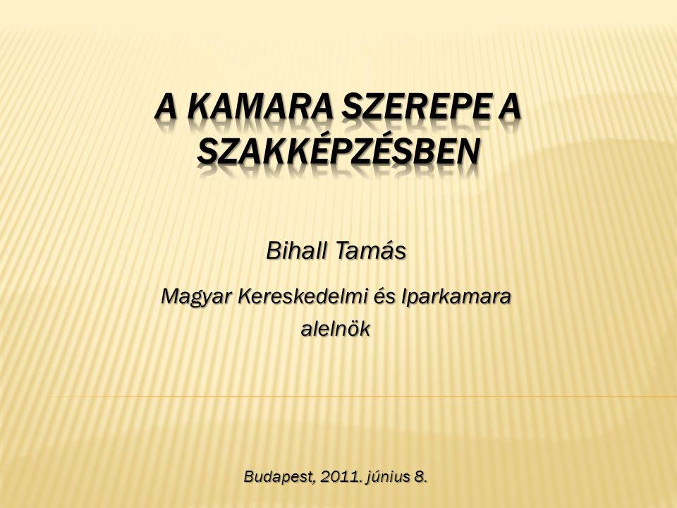 Bihall Tamás Magyar Kereskedelmi és Iparkamara alelnök Budapest, 2011. június 8.