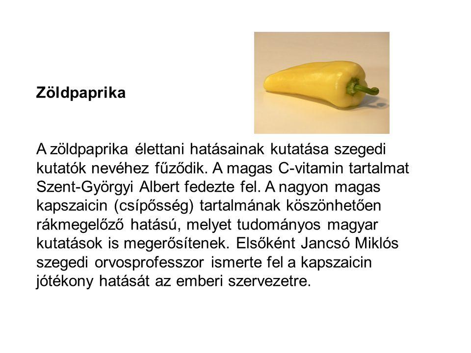 Zöldpaprika A zöldpaprika élettani hatásainak kutatása szegedi kutatók nevéhez fűződik. A magas C-vitamin tartalmat Szent-Györgyi Albert fedezte fel.