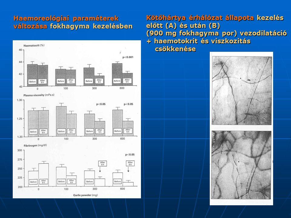 Haemoreológiai paraméterek változása fokhagyma kezelésben Kötőhártya érhálózat állapota kezelés előtt (A) és után (B) (900 mg fokhagyma por) vezodilat