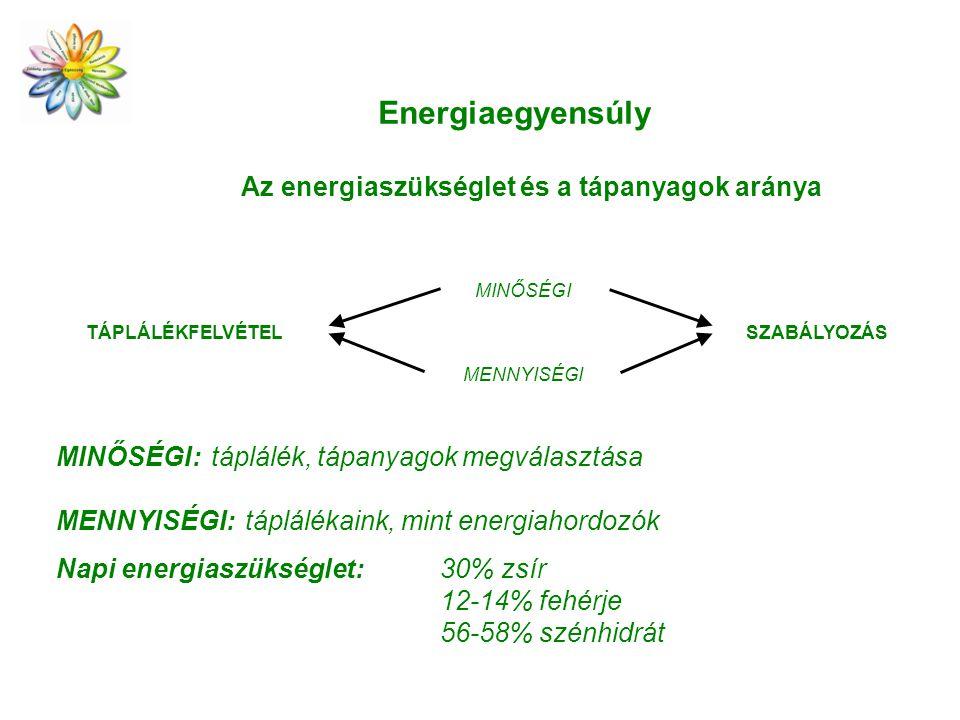 TÁPLÁLÉKFELVÉTEL MENNYISÉGI MINŐSÉGI SZABÁLYOZÁS MINŐSÉGI: táplálék, tápanyagok megválasztása MENNYISÉGI: táplálékaink, mint energiahordozók Napi energiaszükséglet: 30% zsír 12-14% fehérje 56-58% szénhidrát Energiaegyensúly Az energiaszükséglet és a tápanyagok aránya