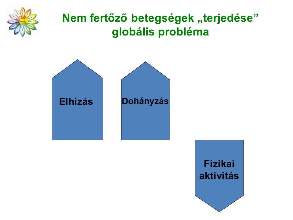 """Nem fertőző betegségek """"terjedése"""" globális probléma Elhízás Dohányzás Fizikai aktivitás"""