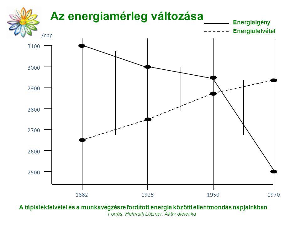 Az energiamérleg változása 3100 1882 3000 197019501925 2500 2600 2800 2900 2700 kcal/fő/nap Energiaigény Energiafelvétel A táplálékfelvétel és a munkavégzésre fordított energia közötti ellentmondás napjainkban Forrás: Helmuth Lützner: Aktív dietetika