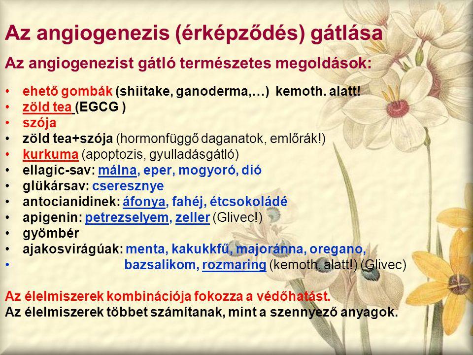 Az angiogenezis (érképződés) gátlása Az angiogenezist gátló természetes megoldások: ehető gombák (shiitake, ganoderma,…) kemoth. alatt! zöld tea (EGCG