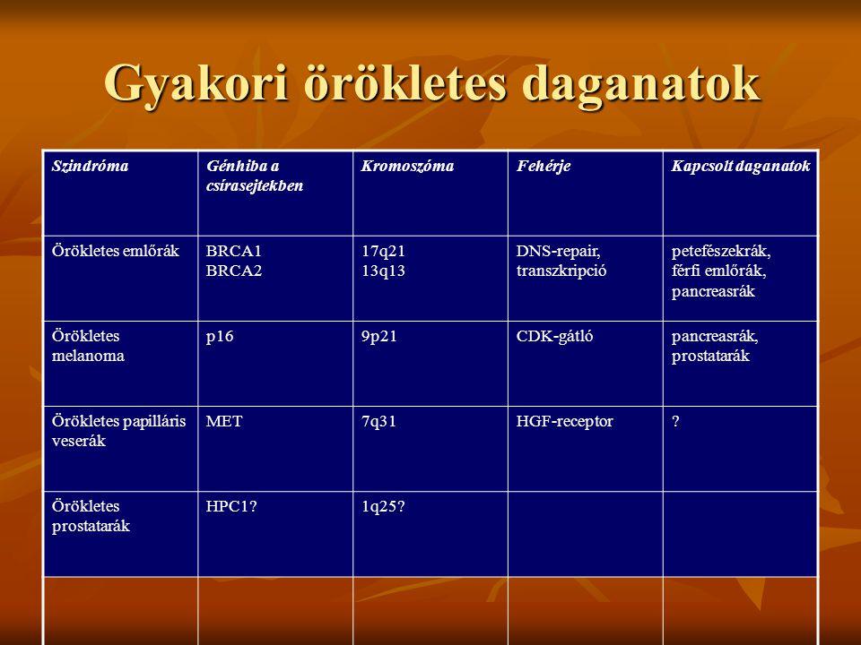 Gyakori örökletes daganatok SzindrómaGénhiba a csírasejtekben KromoszómaFehérjeKapcsolt daganatok Örökletes emlőrákBRCA1 BRCA2 17q21 13q13 DNS-repair, transzkripció petefészekrák, férfi emlőrák, pancreasrák Örökletes melanoma p169p21CDK-gátlópancreasrák, prostatarák Örökletes papilláris veserák MET7q31HGF-receptor.