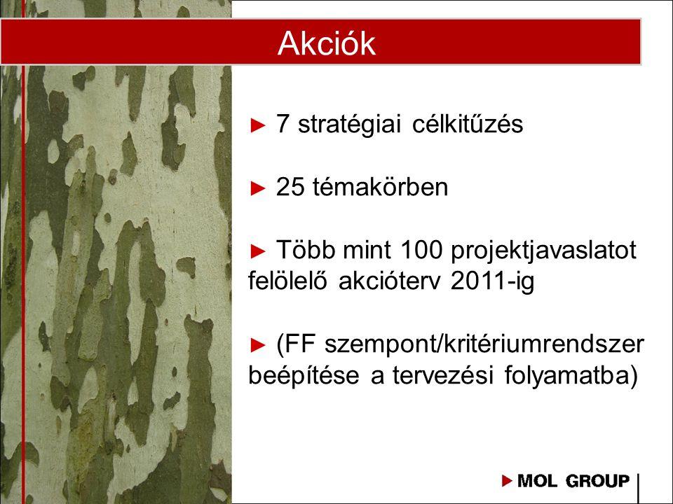 Akciók ► 7 stratégiai célkitűzés ► 25 témakörben ► Több mint 100 projektjavaslatot felölelő akcióterv 2011-ig ► (FF szempont/kritériumrendszer beépíté