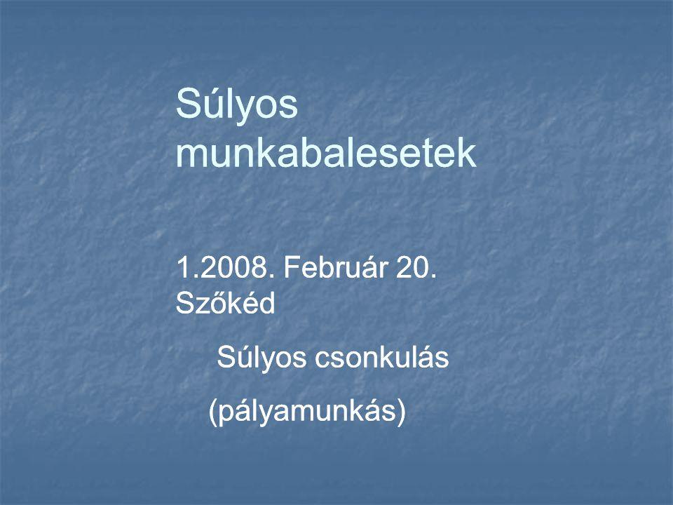 Súlyos munkabalesetek 1.2008. Február 20. Szőkéd Súlyos csonkulás (pályamunkás) Súlyos munkabalesetek 1.2008. Február 20. Szőkéd Súlyos csonkulás (pál