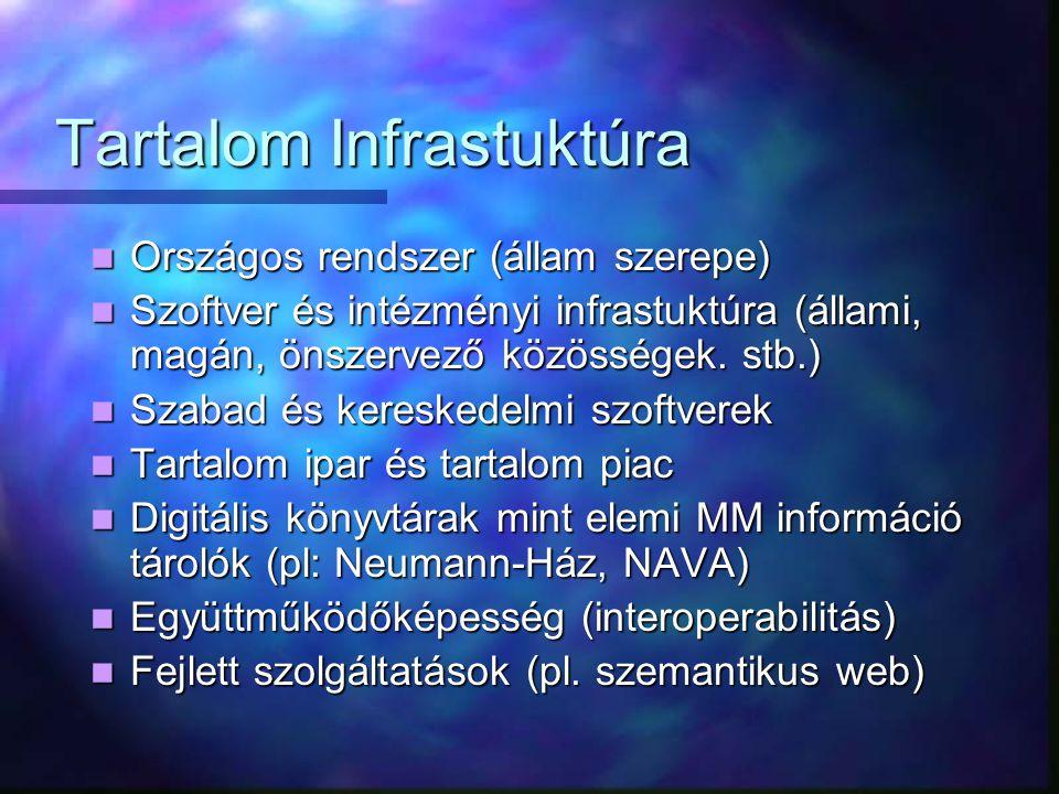 Tartalom Infrastuktúra Tartalom Infrastuktúra Országos rendszer (állam szerepe) Országos rendszer (állam szerepe) Szoftver és intézményi infrastuktúra (állami, magán, önszervező közösségek.