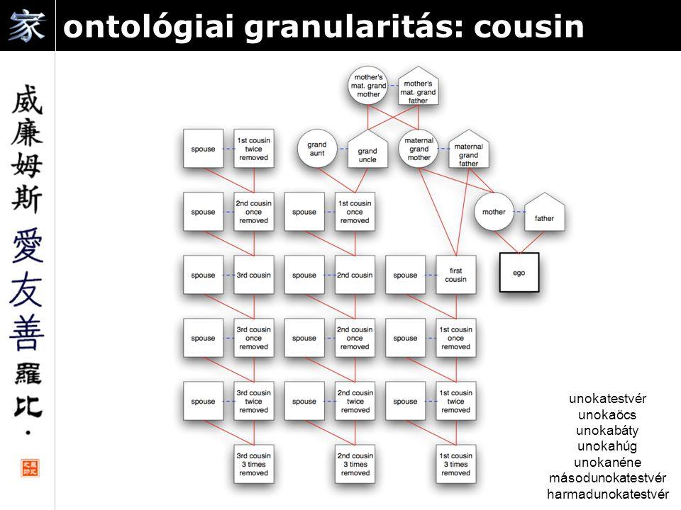 ontológiai granularitás: cousin unokatestvér unokaöcs unokabáty unokahúg unokanéne másodunokatestvér harmadunokatestvér