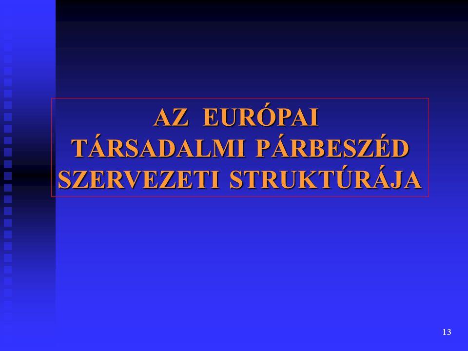 13 AZ EURÓPAI TÁRSADALMI PÁRBESZÉD SZERVEZETI STRUKTÚRÁJA