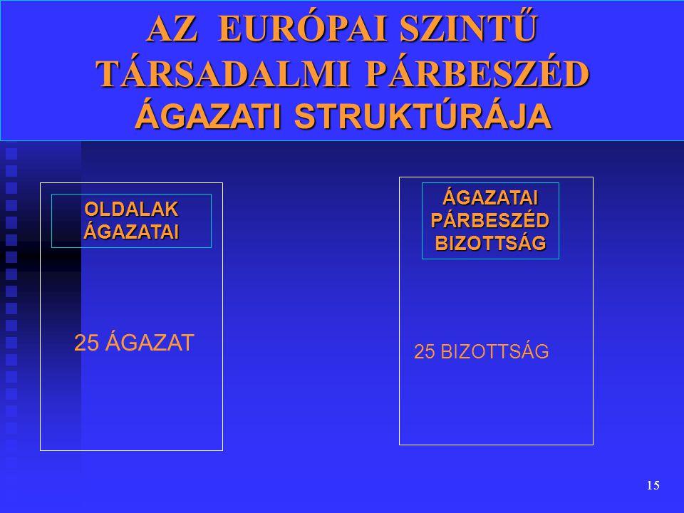 15 AZ EURÓPAI SZINTŰ TÁRSADALMI PÁRBESZÉD ÁGAZATI STRUKTÚRÁJA OLDALAK ÁGAZATAI 25 ÁGAZAT ÁGAZATAI PÁRBESZÉD BIZOTTSÁG 25 BIZOTTSÁG
