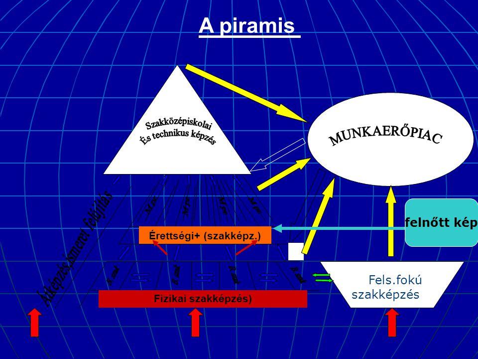 Fizikai szakképzés) Fels.fokú szakképzés Érettségi+ (szakképz.) A piramis felnőtt kép