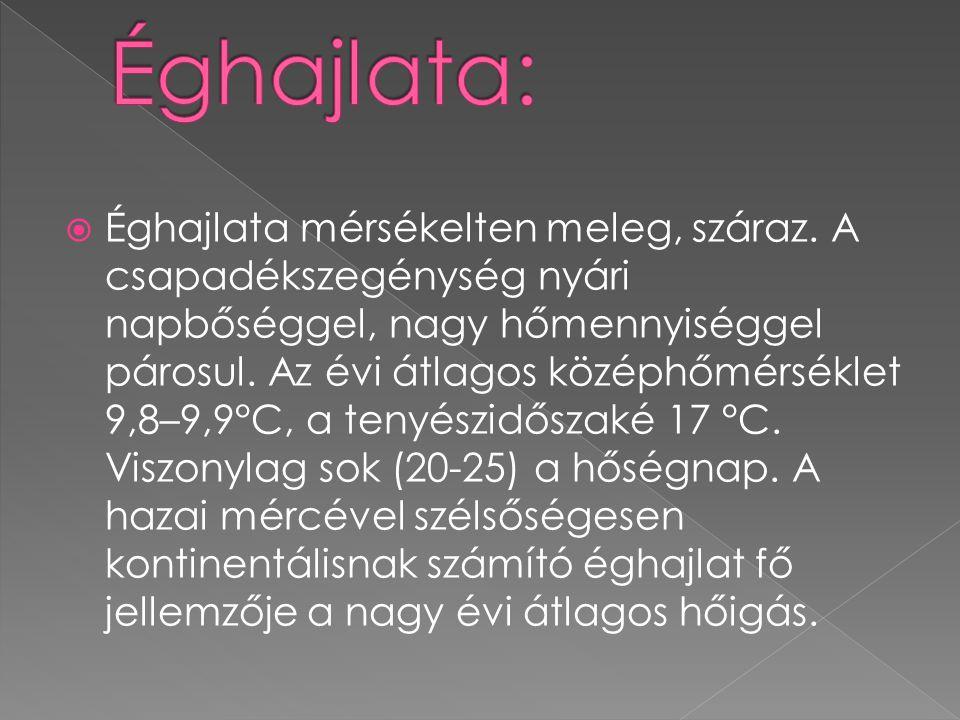  A Hortobágy leghíresebb fajai a szürke marha, rackajuh, mangali- ca sertés és a nóniusz ló.
