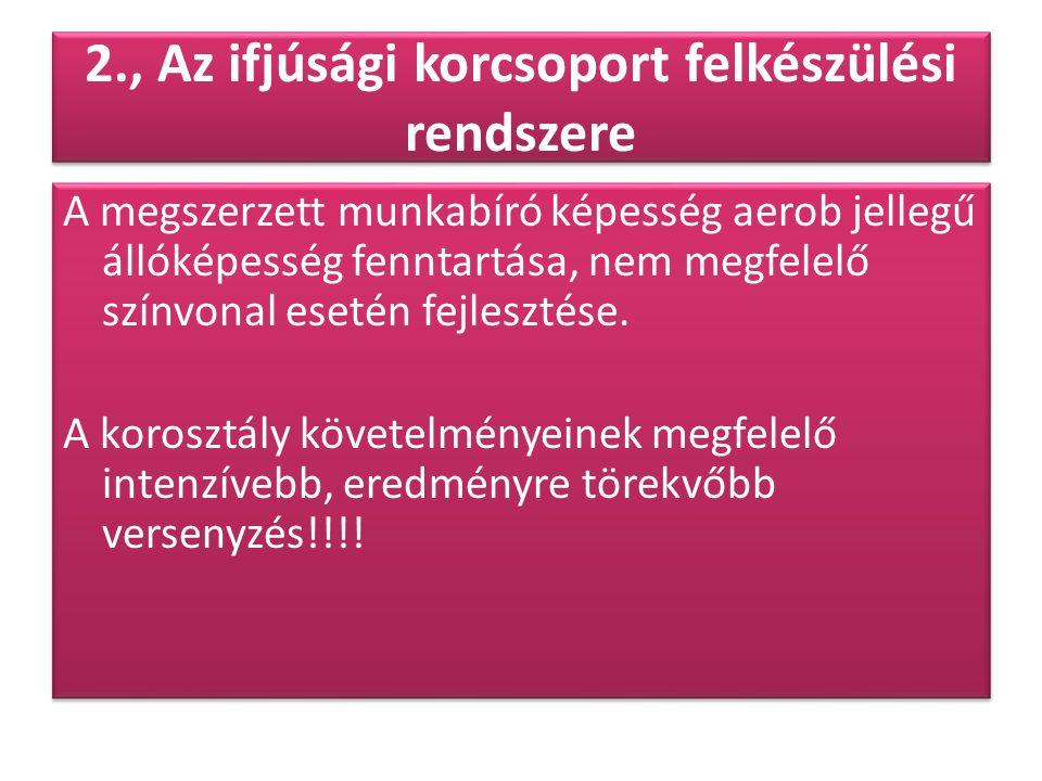2., Az ifjúsági korcsoport felkészülési rendszere A megszerzett munkabíró képesség aerob jellegű állóképesség fenntartása, nem megfelelő színvonal ese