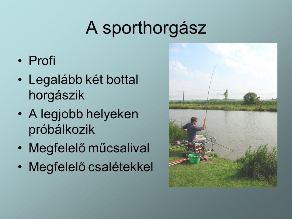 A sporthorgász Profi Legalább két bottal horgászik A legjobb helyeken próbálkozik Megfelelő műcsalival Megfelelő csalétekkel
