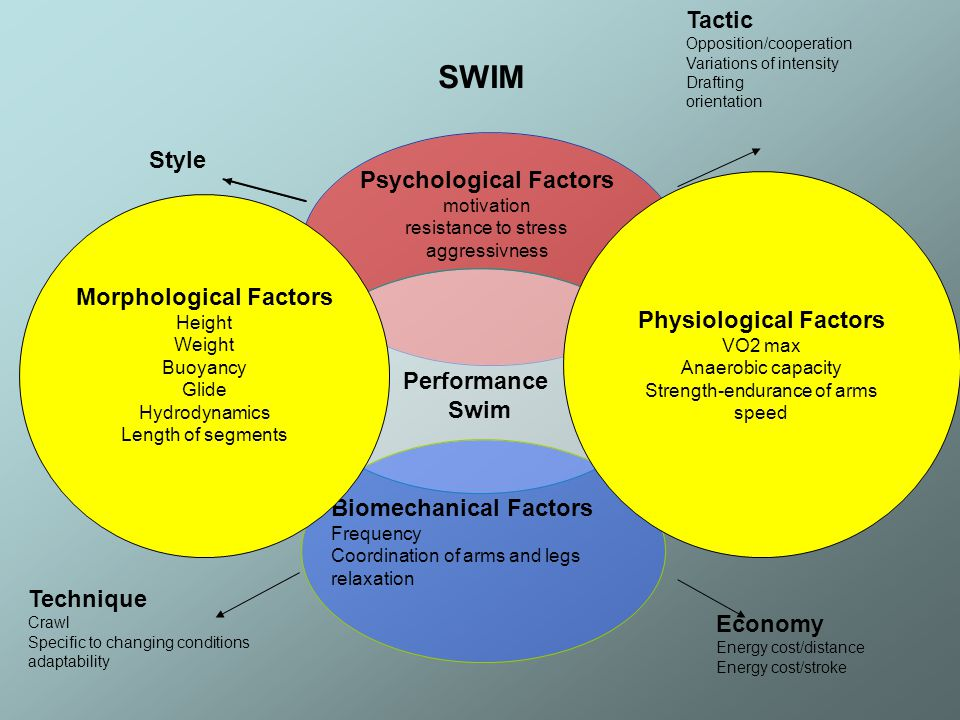 Biomechanical Factors Frequency Coordination of arms and legs relaxation Morphological Factors Height Weight Buoyancy Glide Hydrodynamics Length of segments Physiological Factors VO2 max Anaerobic capacity Strength-endurance of arms speed Technique Crawl Specific to changing conditions adaptability Tactic Opposition/cooperation Variations of intensity Drafting orientation Economy Energy cost/distance Energy cost/stroke SWIM