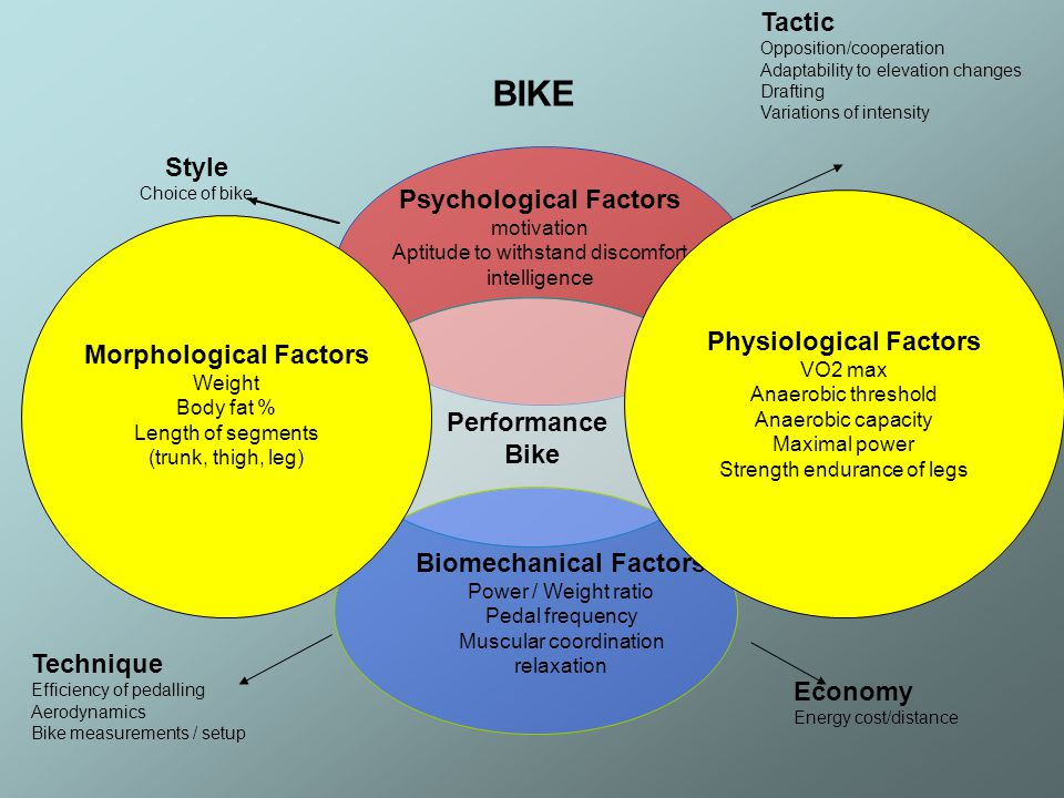 Biomechanical Factors Power / Weight ratio Pedal frequency Muscular coordination relaxation Morphological Factors Weight Body fat % Length of segments (trunk, thigh, leg) Physiological Factors VO2 max Anaerobic threshold Anaerobic capacity Maximal power Strength endurance of legs Technique Efficiency of pedalling Aerodynamics Bike measurements / setup Tactic Opposition/cooperation Adaptability to elevation changes Drafting Variations of intensity Economy Energy cost/distance BIKE