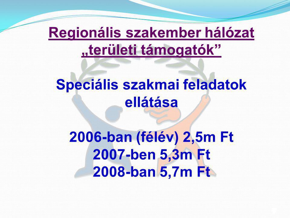 """10 Regionális szakember hálózat """"területi támogatók"""" Speciális szakmai feladatok ellátása 2006-ban (félév) 2,5m Ft 2007-ben 5,3m Ft 2008-ban 5,7m Ft"""