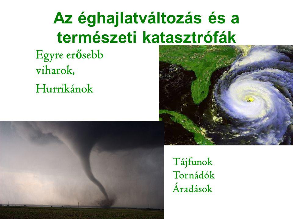 Az éghajlatváltozás és a természeti katasztrófák Egyre er ő sebb viharok, Hurrikánok Tájfunok Tornádók Áradások