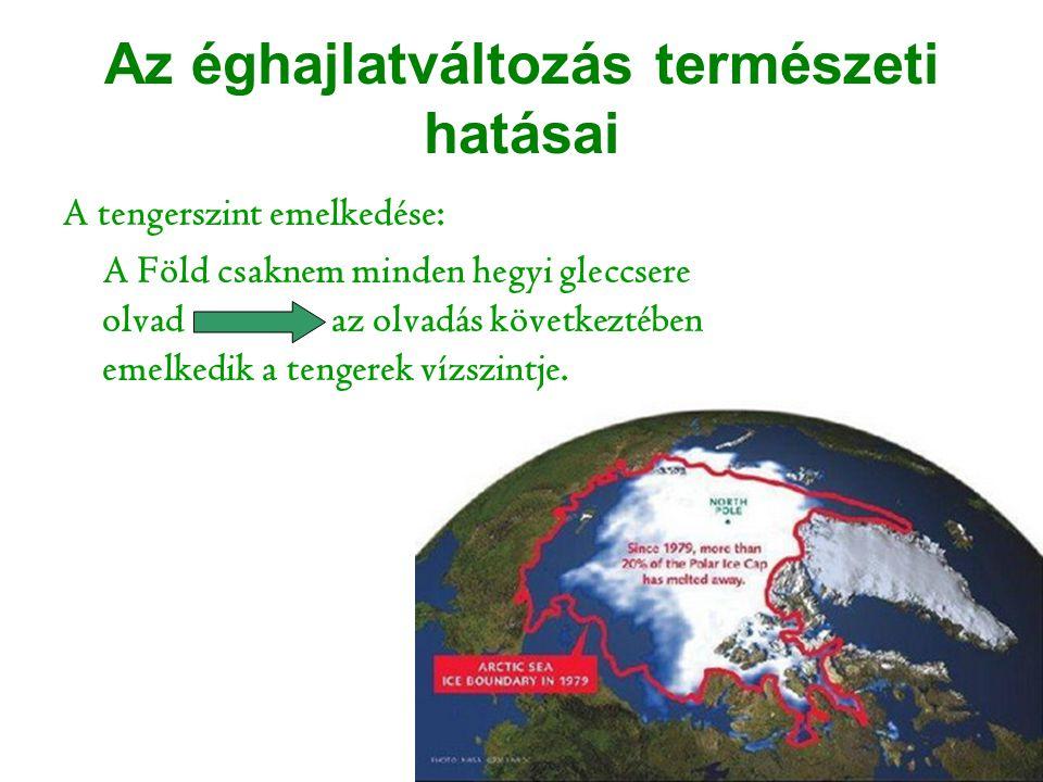 A tengerszint emelkedése: A Föld csaknem minden hegyi gleccsere olvad az olvadás következtében emelkedik a tengerek vízszintje. Az éghajlatváltozás te