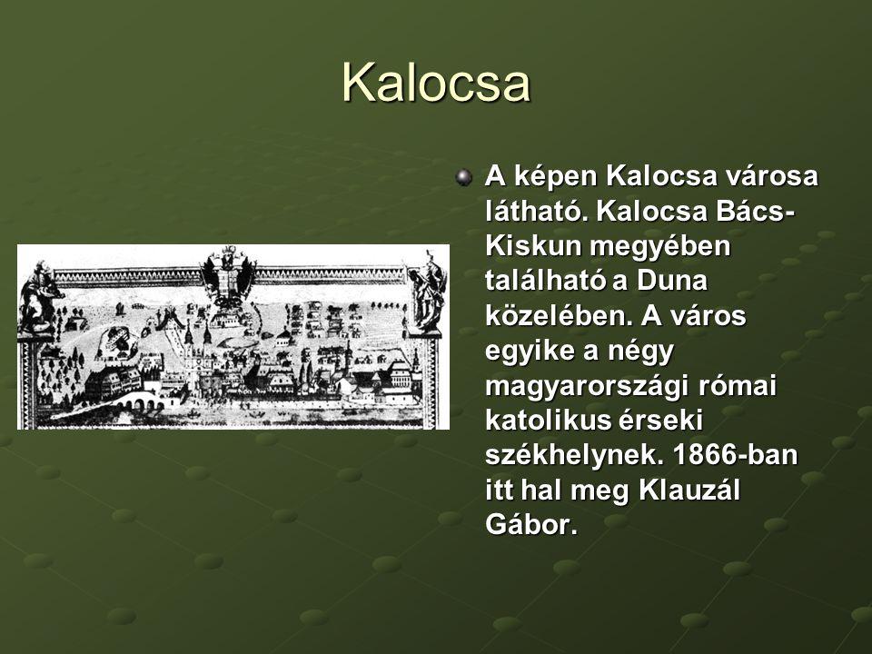 Kalocsa A képen Kalocsa városa látható.Kalocsa Bács- Kiskun megyében található a Duna közelében.