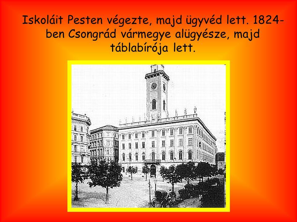 Iskoláit Pesten végezte, majd ügyvéd lett. 1824- ben Csongrád vármegye alügyésze, majd táblabírója lett.