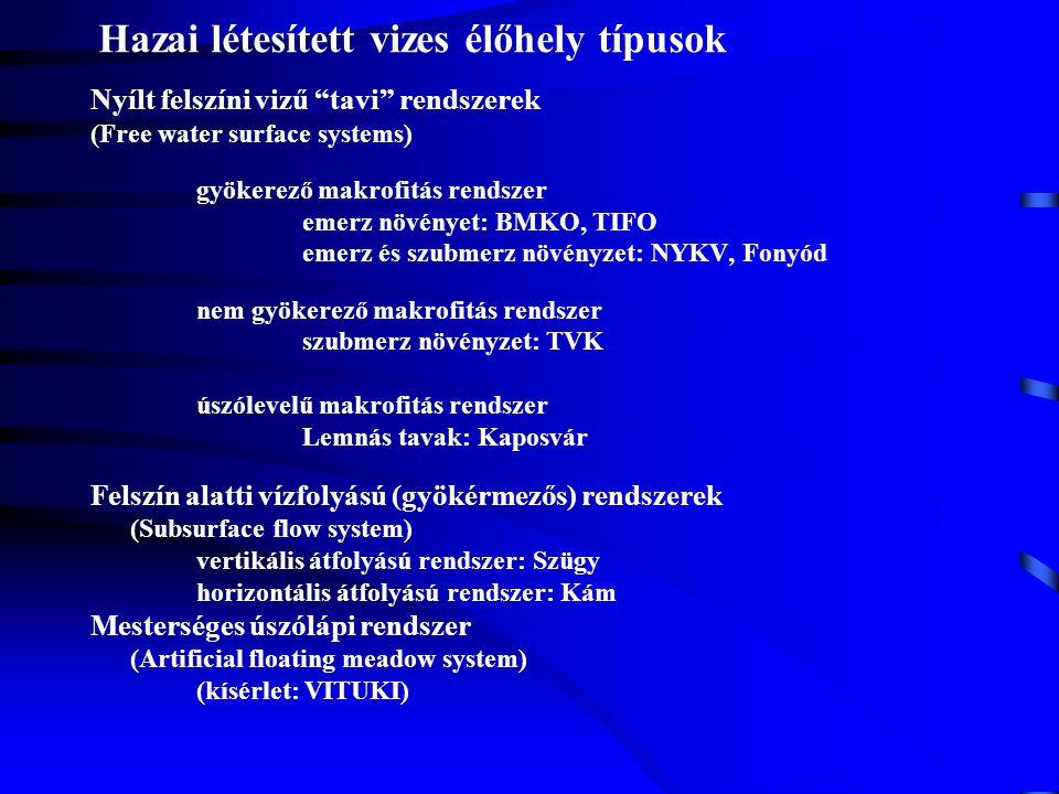 """Hazai létesített vizes élőhely típusok Nyílt felszíni vizű """"tavi"""" rendszerek (Free water surface systems) gyökerező makrofitás rendszer emerz növényet"""