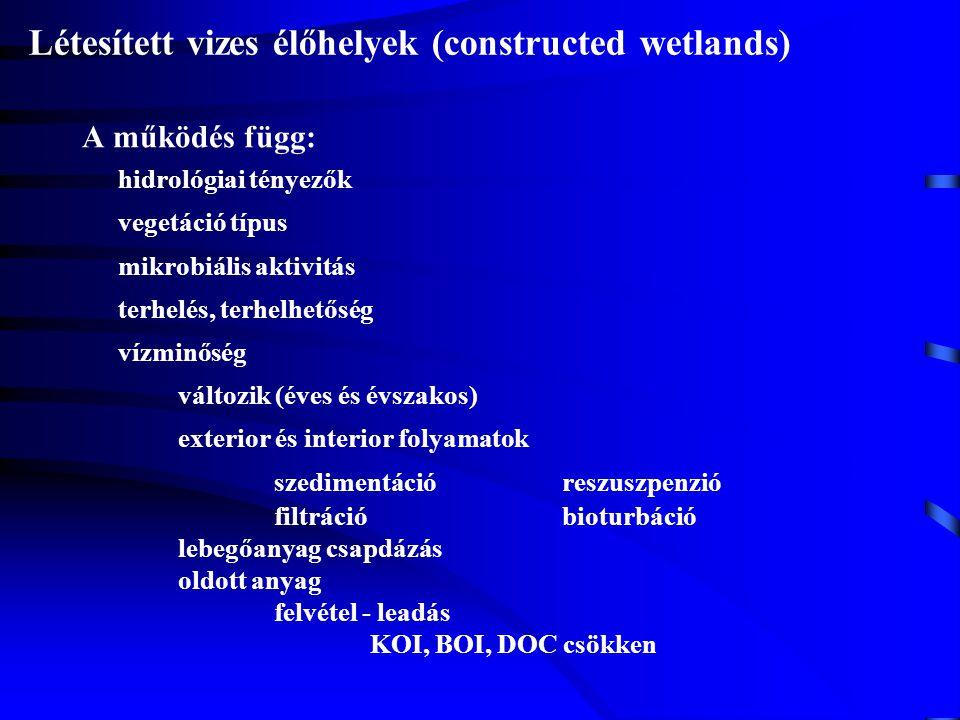 Létesített vizes élőhelyek (constructed wetlands) A működés függ: hidrológiai tényezők vegetáció típus mikrobiális aktivitás terhelés, terhelhetőség v