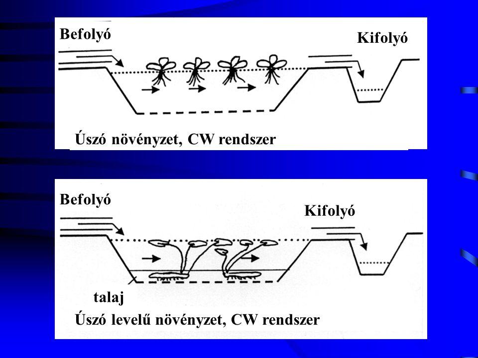Úszó növényzet, CW rendszer Befolyó Kifolyó Befolyó Kifolyó Úszó levelű növényzet, CW rendszer talaj