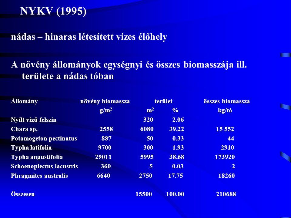 NYKV (1995) nádas – hinaras létesített vizes élőhely A növény állományok egységnyi és összes biomasszája ill. területe a nádas tóban Állomány növény b