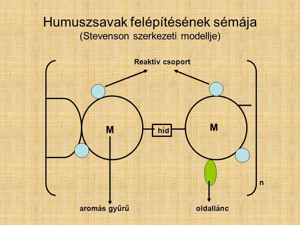 Humuszsavak felépítésének sémája (Stevenson szerkezeti modellje) Reaktív csoport M M híd n aromás gyűrű oldallánc