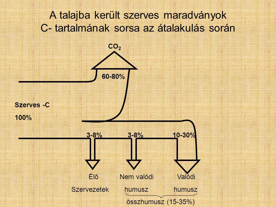 A funkciós csoportok reakciói Szerepük: -a humuszsav monomerek polimerizációs és kondenzációs folyamataiban, -az oldat kationjai és a humuszsavak kölcsönhatásaiban.